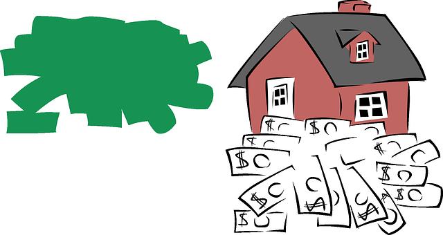 zelený flek, dům, peníze