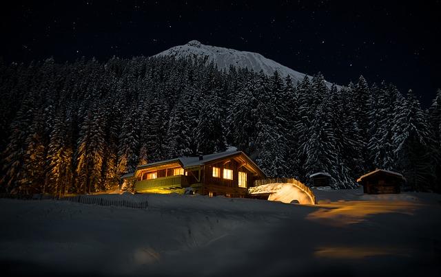 dřevěná chata, sníh, les, hora